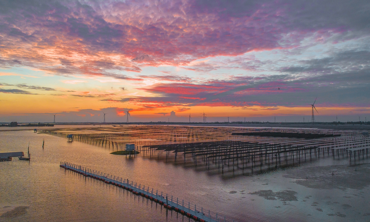 A renewable energy base in Sihong County, East China's Jiangsu Province is seen on Sunday as wind turbines spin. The base can generate 650 million kilowatt-hours of power annually, with tax revenue of 50 million yuan ($7.7 million). The annual income of fishery breeding amounts to 45 million yuan, and tourism income to 20 million yuan. A total of 640,000 tons of carbon emissions can be avoided every year. Photo: VCG