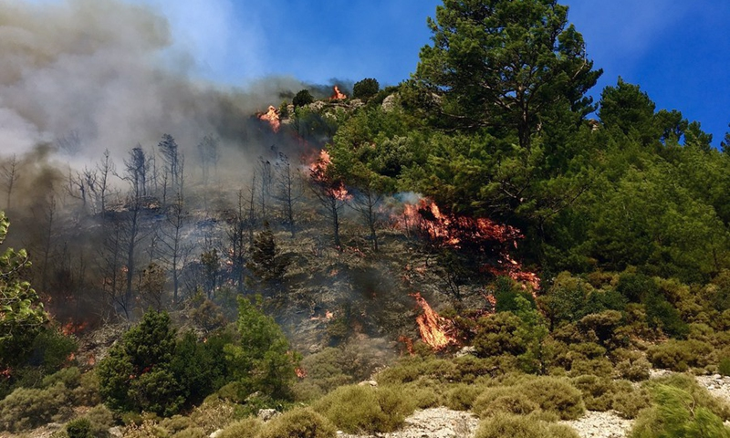 A forest fire burns near the town of Manavgat, east of the resort city of Antalya, Turkey, July 31, 2021.(Photo: Xinhua)