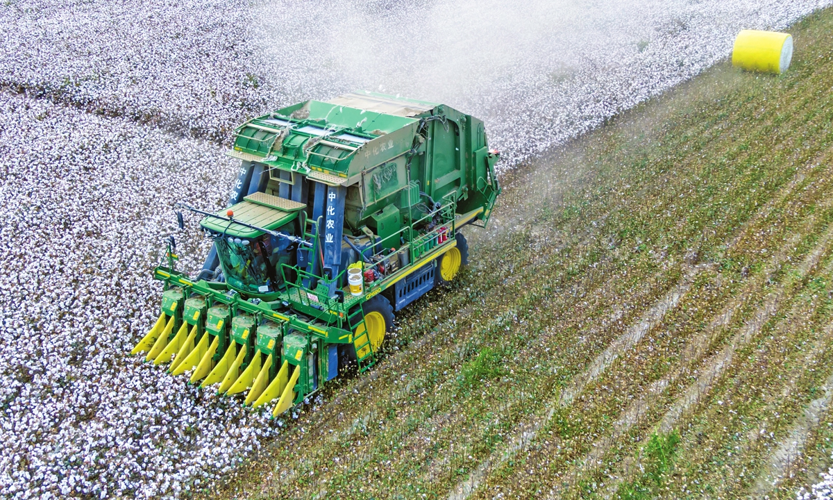 Photo taken on September 28 shows a harvester picking cotton in a field in Yuli county, Bayinguolin Mogolian Autonomous Prefecture in Northwest China's Xinjiang Uygur Autonomous Region. Photo: VCG