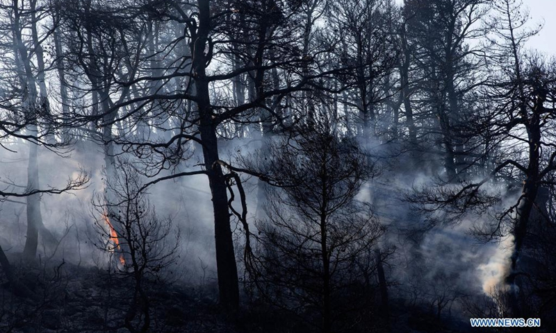 A forest is seen burning in Vilia to the northwest of Athens, Greece, on Aug. 23, 2021. A new wildfire broke out here on Monday, burning in thick forest land.(Photo: Xinhua)