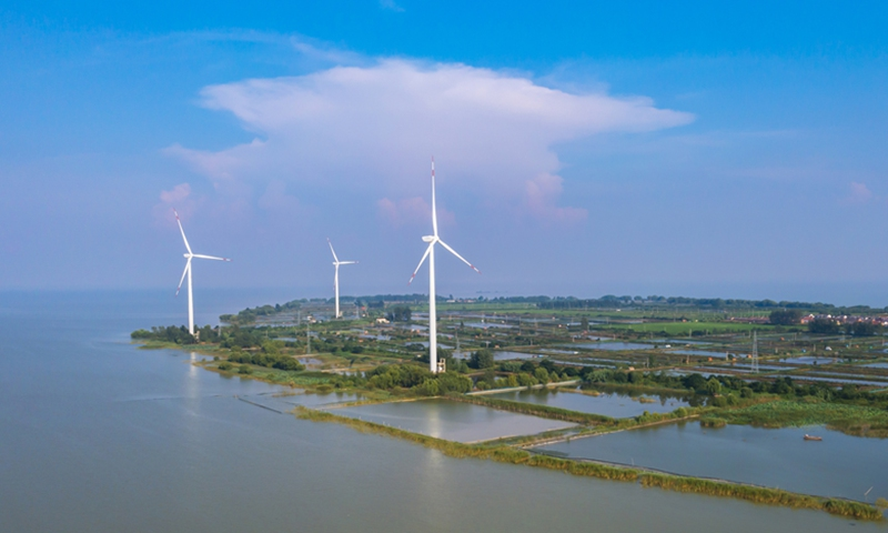 China outlines path to carbon peak, neutrality goals in sweeping plan