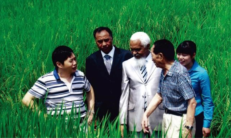Yuan Longping and his Madagascan friends in a hybrid rice field