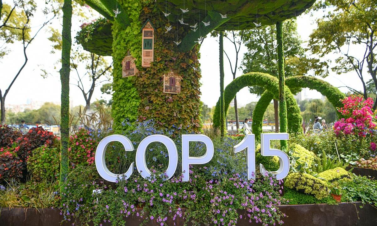 COP 15 Photo:VCG