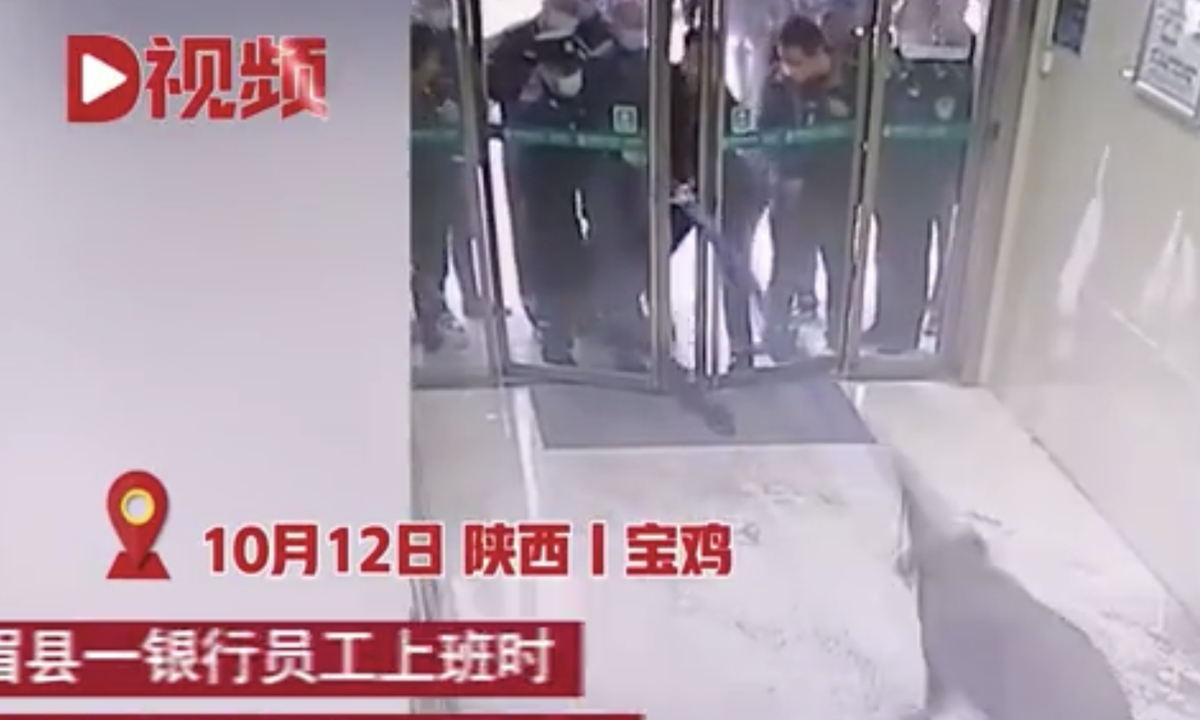 A video circulating on the internet shows many staff members dragging a boar out of the entrance of a bank and later loading it into a net and into a truck. Reports say on Tuesday, a bank staff member in Baoji, Shanxi found the boar inside the bank in the morning and then contacted the local forestry bureau to deal with it. Photo: Sina Weibo