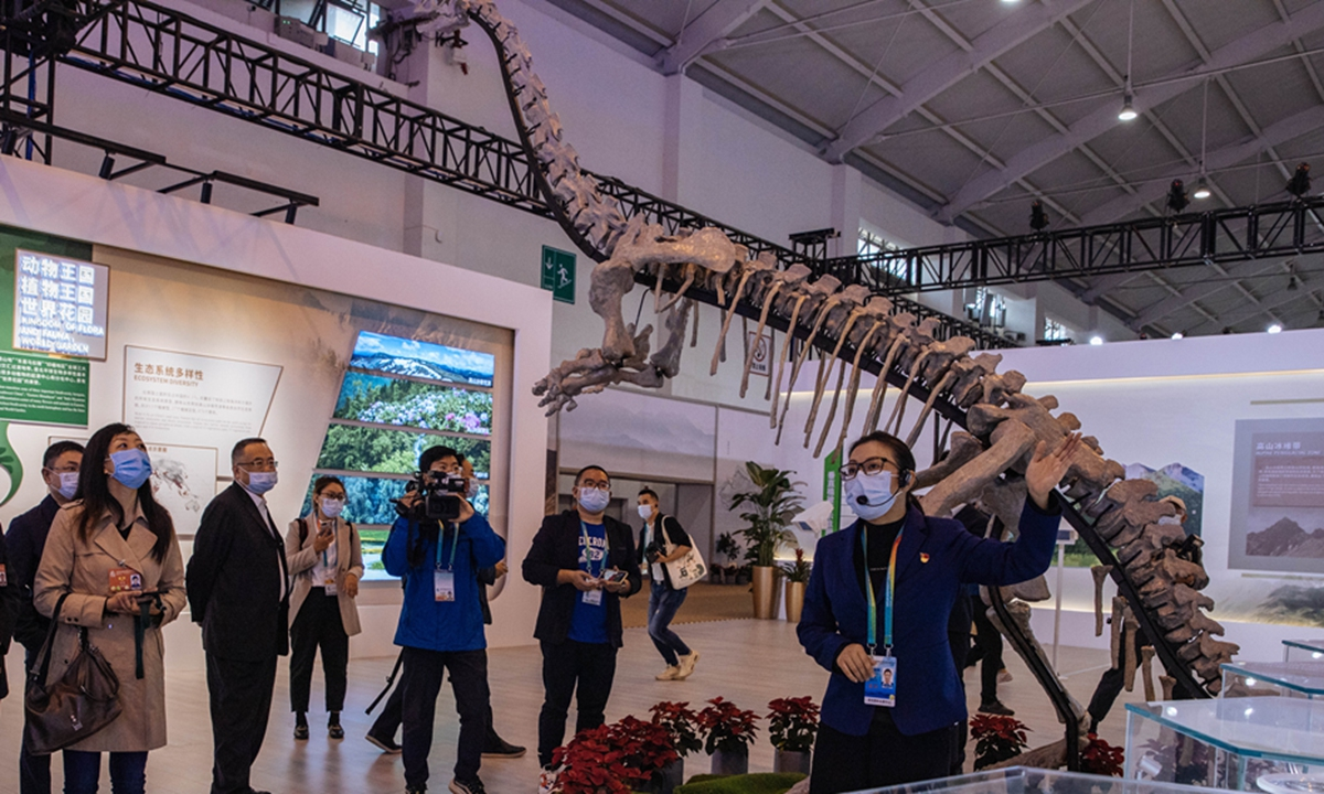 China's first 3D-printed dinosaur skeleton is on exhibit at the COP 15 in Kunming. Photo: Li Hao/GT